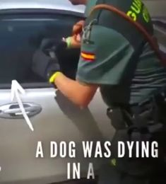 In the nick of damn time.Thank You Sir Save Animals, Animals And Pets, Funny Animals, Stop Animal Cruelty, Faith In Humanity Restored, Cool Pets, Funny Animal Videos, Beautiful Horses, Best Funny Pictures