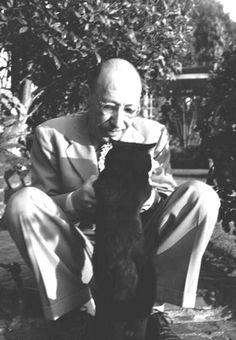 Igor Stravinski chat noir