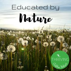 Nature play/Educated by Nature/outdoor education/playwork