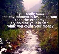 40 Best Environmental Quotes To Inspire You To Help Save The Planet Save Our Earth, Save The Planet, Our Planet, Save Planet Earth, Salve A Terra, Angst Quotes, Environment Quotes, Save Environment, Life Quotes Love