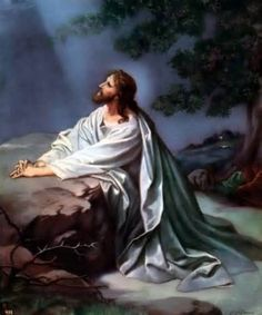 jesus prays in the garden of gethsemane - Yahoo Image Search Results