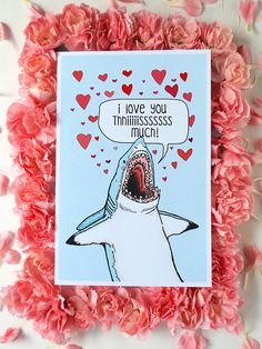 Ten Pack Great White Shark I Love You This Much