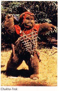 Chukha-Trok. Gave his life so the Ewoks could escape.