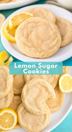 Soft and Chewy Lemon Cookies are a crowd favorite cookie that you can make anytime of the year. These lemon sugar cookies are thick and chewy and easy to freeze. Easy to make in one bowl with fresh lemon and everyday ingredients. Lemon Desserts, Lemon Recipes, Köstliche Desserts, Baking Recipes, Sweet Recipes, Dessert Recipes, Easy Cookie Recipes, Dog Recipes, Health Desserts