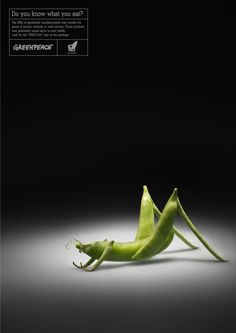 Greenpeace - Do you know what you eat? poster campaign for GMO-Free label awareness.