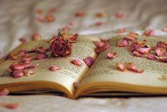 Temprano el mismo organillo en la entrada del callejón ,hizo volar la canción que en invierno nos despertó y al escuchar le dí vuelta a la página treinta y dos,del libro donde pusiste los pétalos de una flor y cuando los vi algo brillo, algo de ti ,que había olvidado... - Manuel García ,Un rey y un diez.