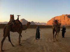 Sunrise Camel Ride & Snorkeling in Aqaba, Jordan  #sunrise #camelride #camel #snorkeling #Aqaba #Jordan