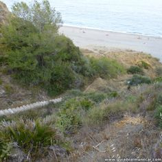 Sendero sube al Peñón del Lobo, se separa de las Escaleras y vistas a la Playa El Muerto. Almuñécar Costa Tropical de Granada. www.guiadealmunecar.com