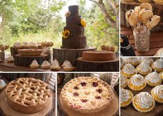 Amazing dessert table from Coastal Cake Company, Parksville BC - tree bark cake, rustic pies, tarts and pie pops