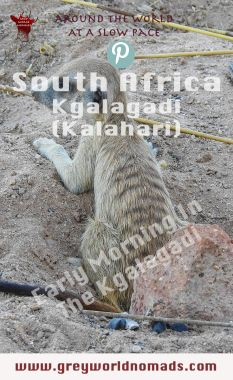 The Kgalagadi Transfrontier Park boasts of wildlife. Herds of antelopes provide food for predators, both to be watched frequently at the waterholes. Visit South Africa, Earth Surface, Wildlife Safari, Early Retirement, Beach Holiday, Africa Travel, Early Morning, Continents, Travel Guides