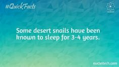 Some desert snails have been known to sleep for 3-4 years.