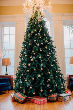 Real weddings: A magnificent wedding in Mount Juliet for Ciara and Justin Mount Juliet, Big Day, Real Weddings, Wedding Decorations, Christmas Tree, Holiday Decor, Teal Christmas Tree, Wedding Decor, Xmas Trees