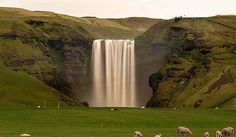 Skógafoss is a waterfall situated on the Skógá River in the south of Iceland at the cliffs of the former coastline. After the coastline had receded seaward (... Get more information about the Skógafoss on Hostelman.com #attraction #Iceland #landmark #travel #destinations #tips #packing #ideas #budget #trips
