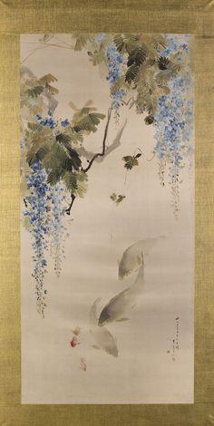 kwiaty wistarii, karpie i złote rybki // wisteria flowers, carp and goldfish