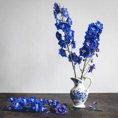 Ask Ella Delphinium_Garden Collage_Andreana Collage, Delphinium, Colorful Flowers, Special Events, Wedding Flowers, Floral Design, December, Concept, Vase