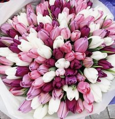 Beautiful Bouquet Of Flowers, Beautiful Flower Arrangements, Tulips Flowers, Fresh Flowers, Spring Flowers, Beautiful Roses, Beautiful Flowers, White Tulips, Garden Rose Bouquet