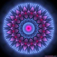 Mandala ?                                                       …