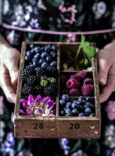Purple, Plum, and Berry Food Display Fruit And Veg, Fruits And Vegetables, Fresh Fruit, Fruit Box, Yummy Recipes, Dessert Recipes, Fruit Photography, Colour Photography, Vegetables Photography