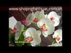 Hướng dẫn cách làm hoa đất sét Nhật Bản - Lan Hồ Điệp Trắng P2 - YouTube