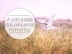 A vida é feita dos pequenos momentos. #vida #pequeno #momento