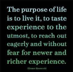 from one of my heroes Elenore Roosevelt