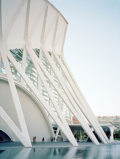 Príncipe Felipe Science Museum / SANTIAGO CALATRAVA by craigmageephotography, via Flickr
