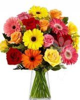 Gerbera Daisy And Roses Bouquet at Send Flowers. Mixed gebera daisies bouquet with hot pink, yellow and orange gerbera daisies and red roses in glass vase. Gerbera Daisy Bouquet, Rose Bouquet, Gerbera Daisies, Daisies Bouquet, Sunflowers, Yellow Daisies, Pink Daisy, Orange Roses, Margarita Rosada