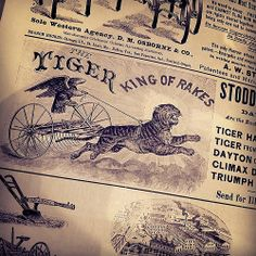 It does not get more epic than a Tiger-drawn rake driven by an eagle.  Prove me wrong.  Captured in the wilds of the Scott Antique Show in Columbus, OH.  #typehunter #vintageadvertising #epictypography