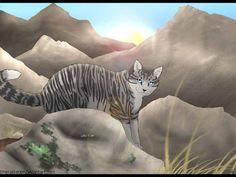 貓戰士粉絲營地的相片。