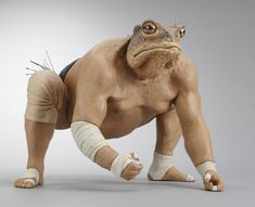 The Frog Sumo Wrestler - Alessandro Gallo