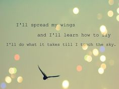 I'll spread my wings and I'll learn how to fly I'll do what it takes til' I touch the sky