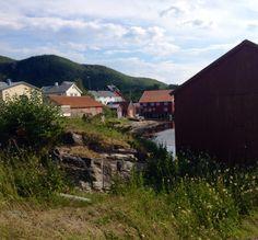 North-Norway, Inndyr