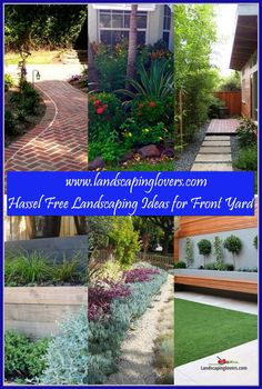 DIY Cheap Landscaping Around The House ** Continue with the details at the image link. Landscaping Around House, Improve Yourself, Image Link, Backyard, Landscape, Plants, Diy, Patio, Scenery