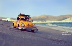 kim leuenberger - Yahoo Image Search Results