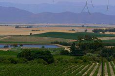 Riebeek Kasteel south africa - Google Search South Africa, Southern, River, Google Search, Outdoor, Africa, Outdoors, Outdoor Games, The Great Outdoors