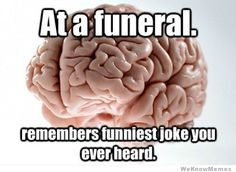 Because your brain is trying to kill you in ways you don't even realize, the best of the hilarious Scumbag Brain Meme! Scumbag Brain, Brain Meme, Ocd Brain, Nine Out Of Ten, Pokerface, Come Undone, Humor Grafico, All Family, How To Wake Up Early