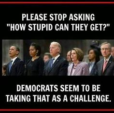 Please stop asking how stupid can they get? Democrats seem to be taking that as a challenge.