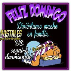 Postales Para Compartir.: FELIZ DOMINGO!!