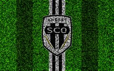 Download wallpapers Angers SCO, 4k, football lawn, logo, French football club, grass texture, emblem, black and white lines, Ligue 1, Angers, France, football, Angers FC