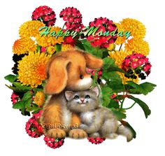 Happy Monday Days Of Week, Months In A Year, Good Morning Good Night, Day For Night, Happy Day Gif, Happy Monday Quotes, Monday Blessings, Puppy Images, Monday Inspiration