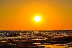 Sun, Sunset, Summer, Nature