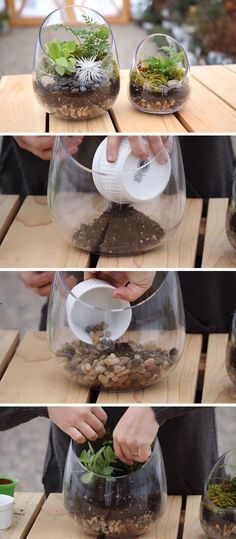 Here's a home decor DIY for making your own modern terrarium using a glass bowl that lets you show off your plants and see the layers of rocks, soil and moss.