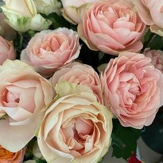 David Austin flowers for Melissa David Austin roses are the epitome of roses They are classic soft romantic petals and a perfect perfume A must for every bridal bouquet Rose Wedding, Wedding Flowers, David Austin Roses, Bouquet, Perfume, Romantic, Bridal, Classic, Plants