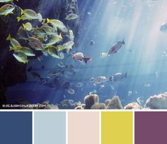 My favorite color is blue, and I love the ocean, so this color palette struck me since it incorporated the different colors also seen in the ocean because of the fish, aside from just blue. When I think of the ocean I only think of blue, so by adding the light pink, yellow and purple adds to the variety of the palette.