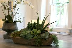 Plant a succulent garden in a dough bowl. Line the bowl well to prevent water damage though.