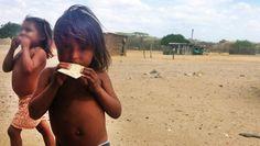 Vino y girasoles...: Mueren ocho niños por desnutrición en Colombia