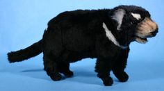 Tasmanian Devil Plush Toy