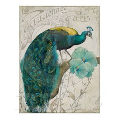 Les Paons II Vintage Peacocks Art Nouveau Poster from Zazzle.com