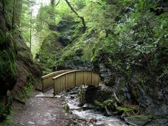 Option- Pucks Glen SW of Loch Lomond first day out of glasgow