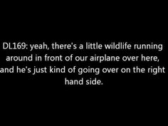 Air Traffic Control and Wildlife - YouTube